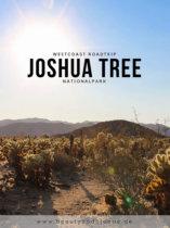 Westcoast USA Roadtrip  Joshua Tree Nationalpark