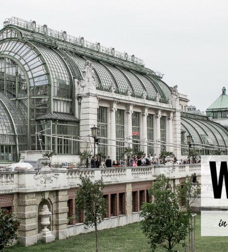 Travelguide <br/> Wien in 24 Stunden