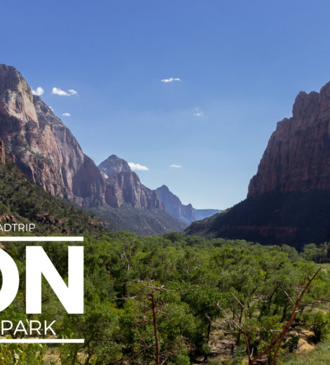Westcoast Roadtrip </br> Zion National Park