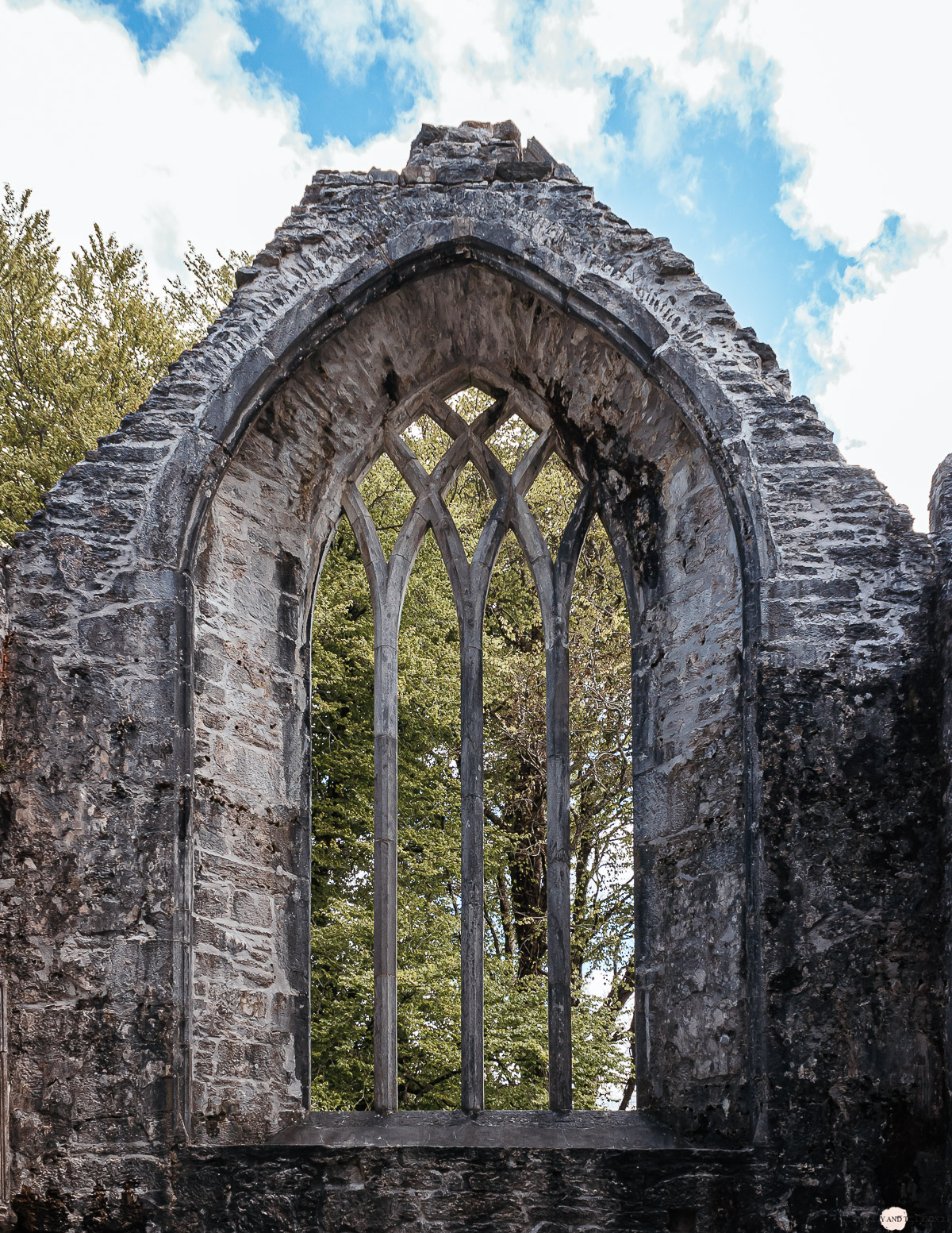 Irland Roadtrip Muckross Abbey Ring of Kerry