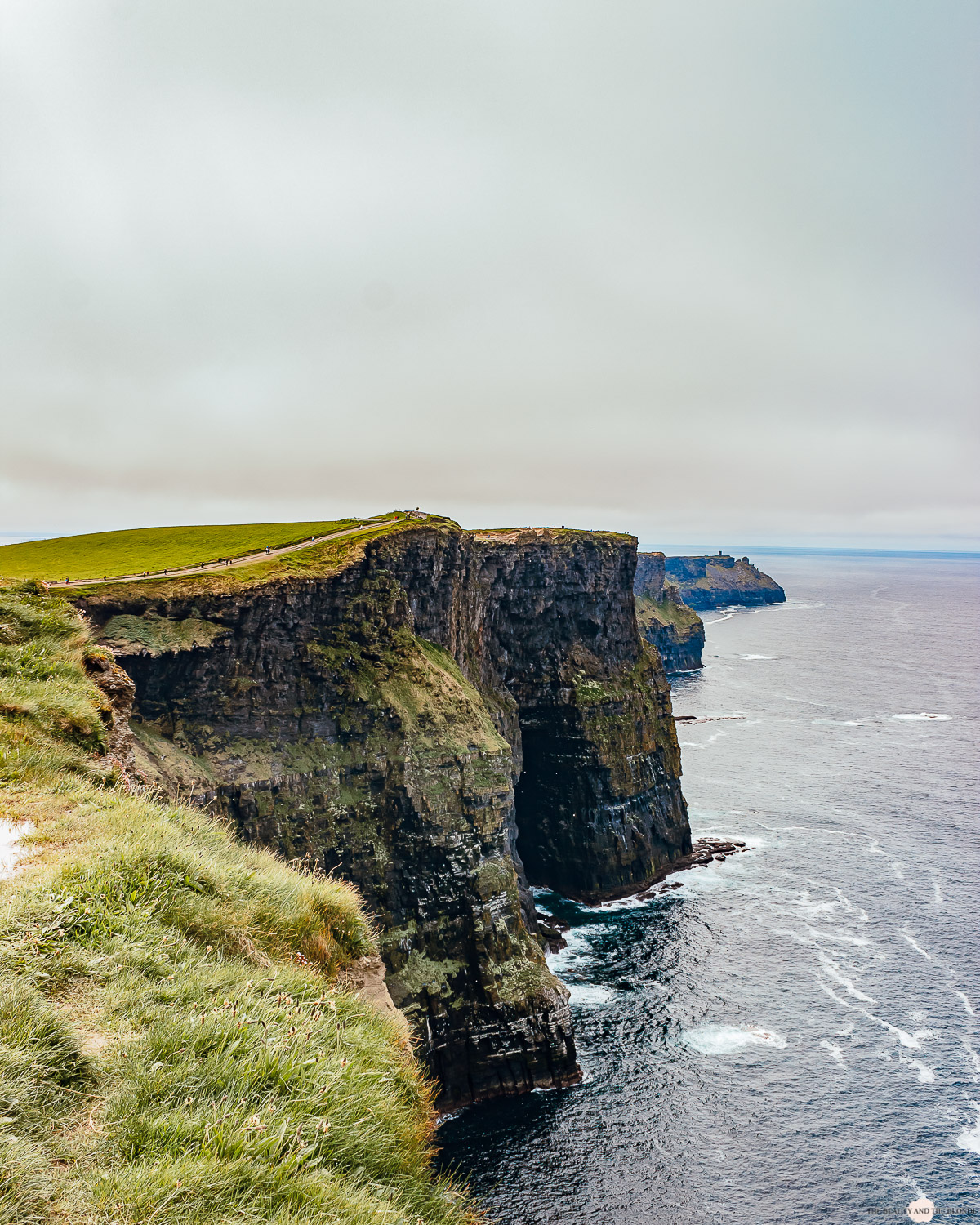 Irland Roadtrip Cliffs of Moher
