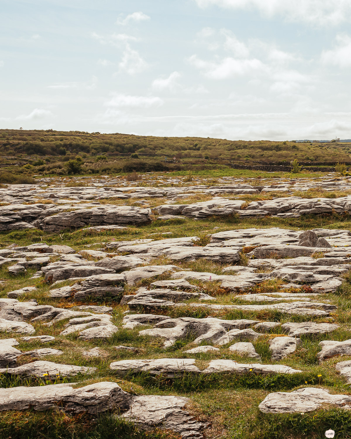 Irland Roadtrip The Burren